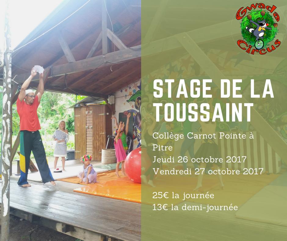 Stage de cirque à Pointe à Pitre Guadeloupe